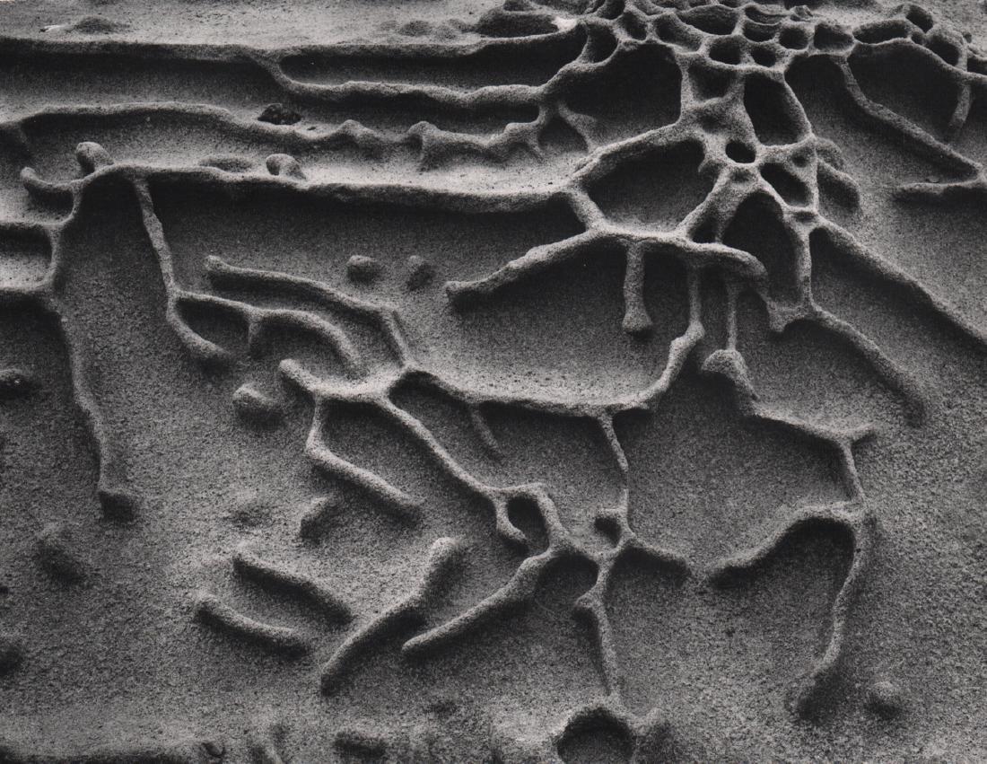 EDWARD WESTON - Rock Erosion