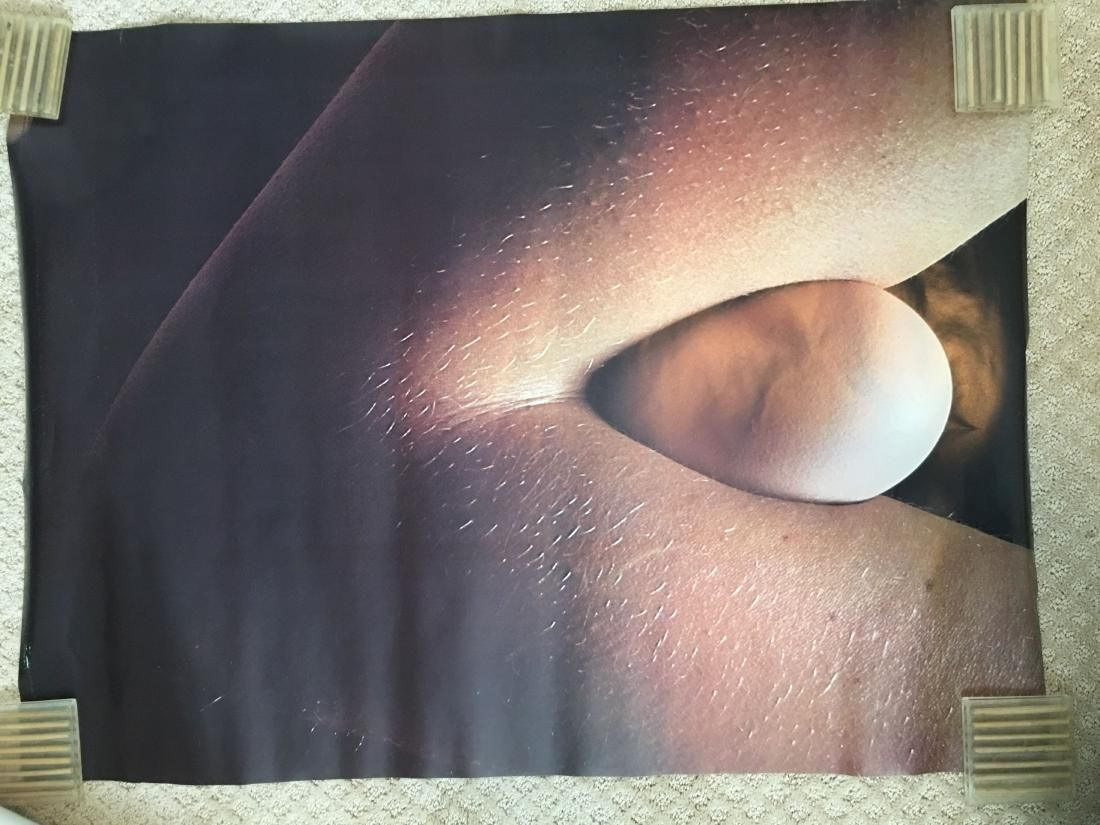 Egg in Elbow - Personality Posters