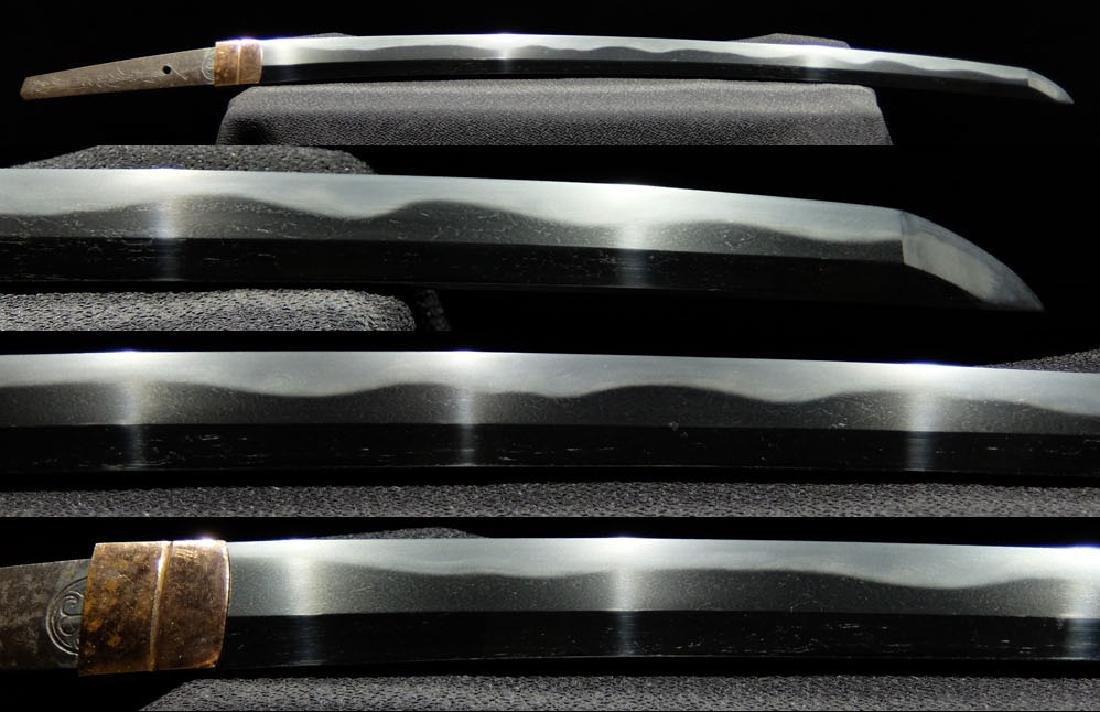 Original Japanese Wakizashi sword from Tokugawa family - 6