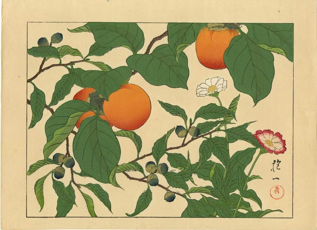 Not Read Woodblock Persimmons and Acorns