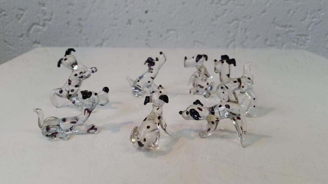 Dalmatiers glass