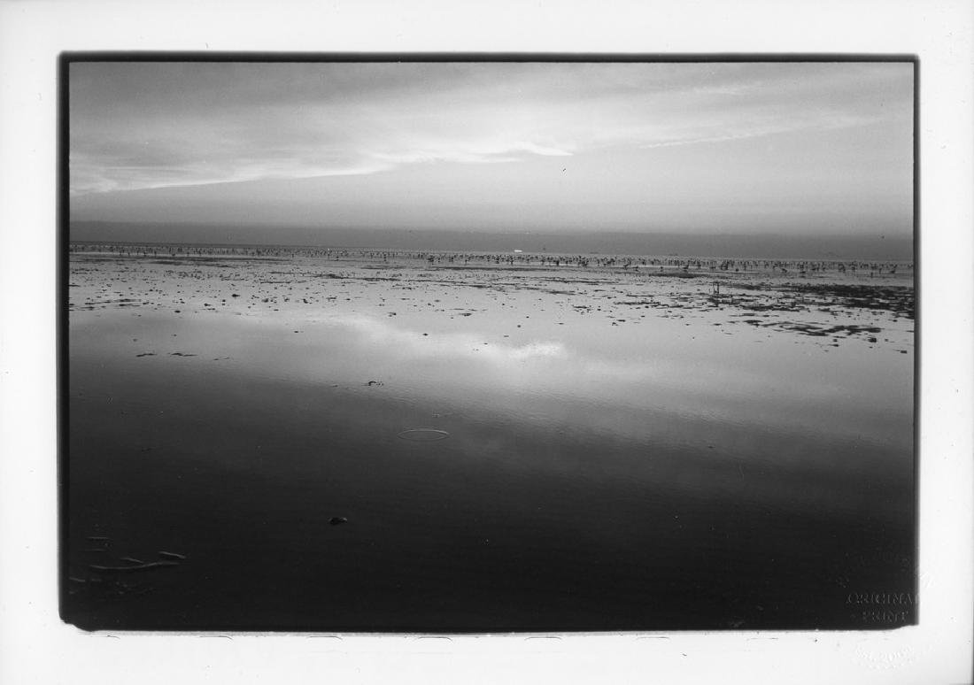 Paul Cooklin Calm, Heacham Beach, King's Lynn 2015 - 4