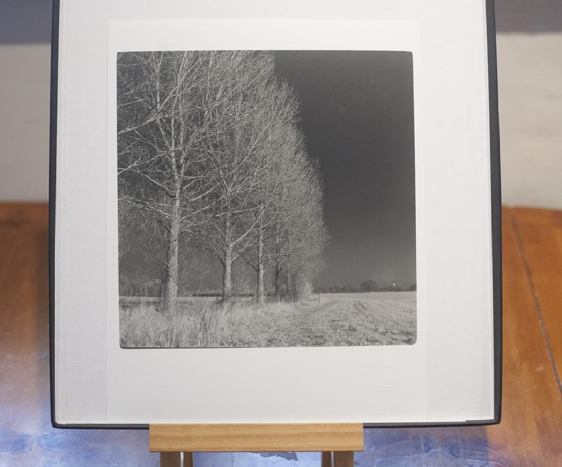 Paul Cooklin West Thorpe I Suffolk 2013 Infrared Photo