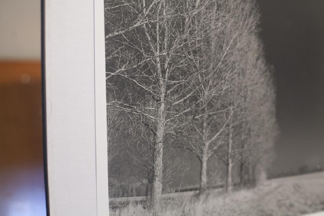 Paul Cooklin West Thorpe I Suffolk 2013 Infrared Photo - 4