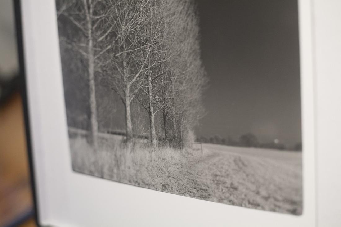 Paul Cooklin West Thorpe I Suffolk 2013 Infrared Photo - 6