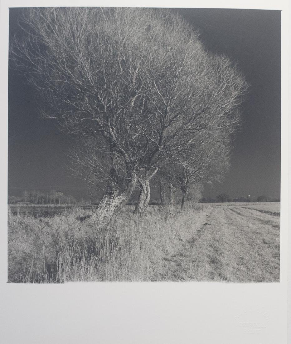 Paul Cooklin West Thorpe IV Suffolk 2013 Infrared Photo - 2