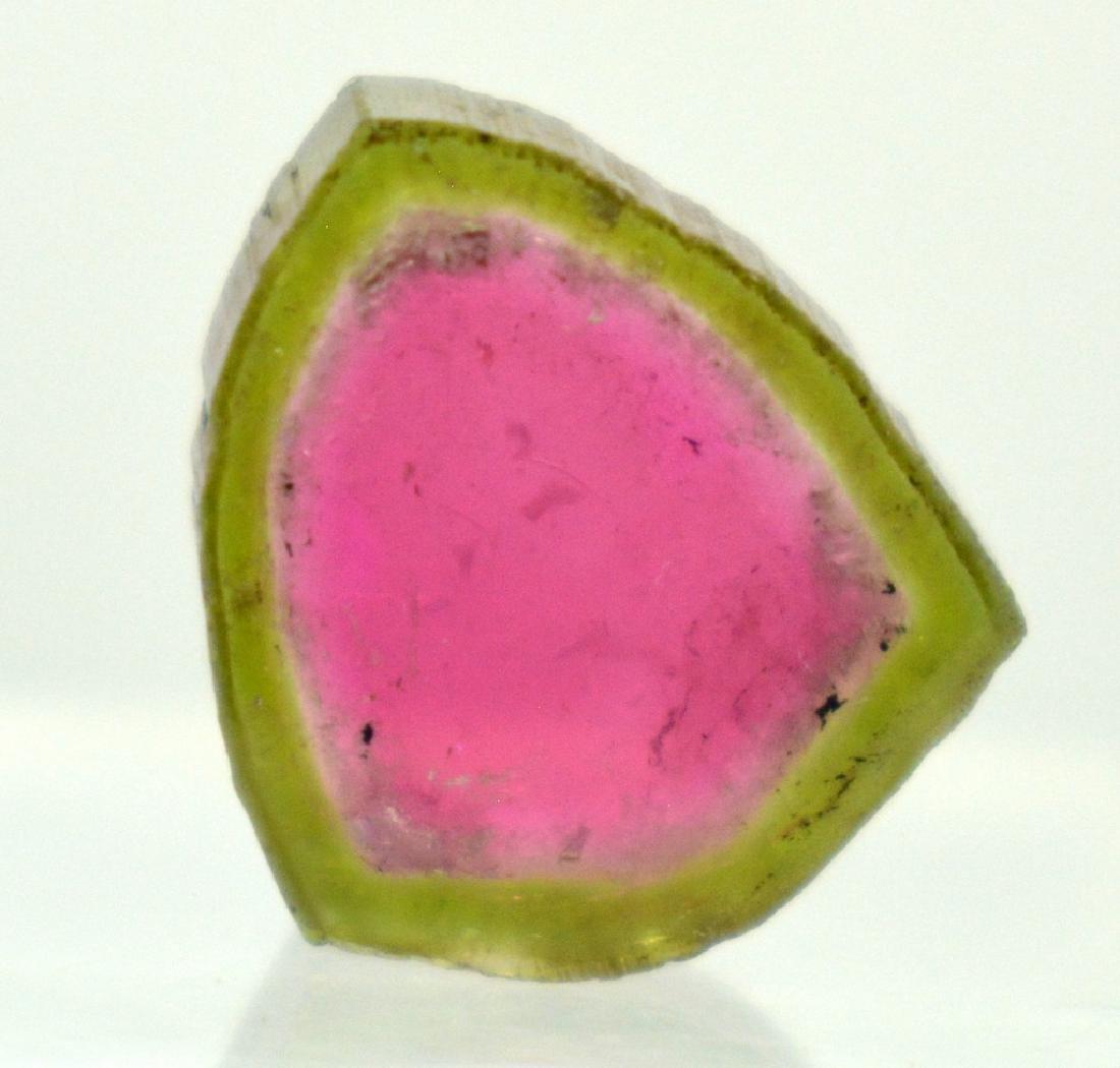 Beautifull Watermelon Tourmaline Slice - 2