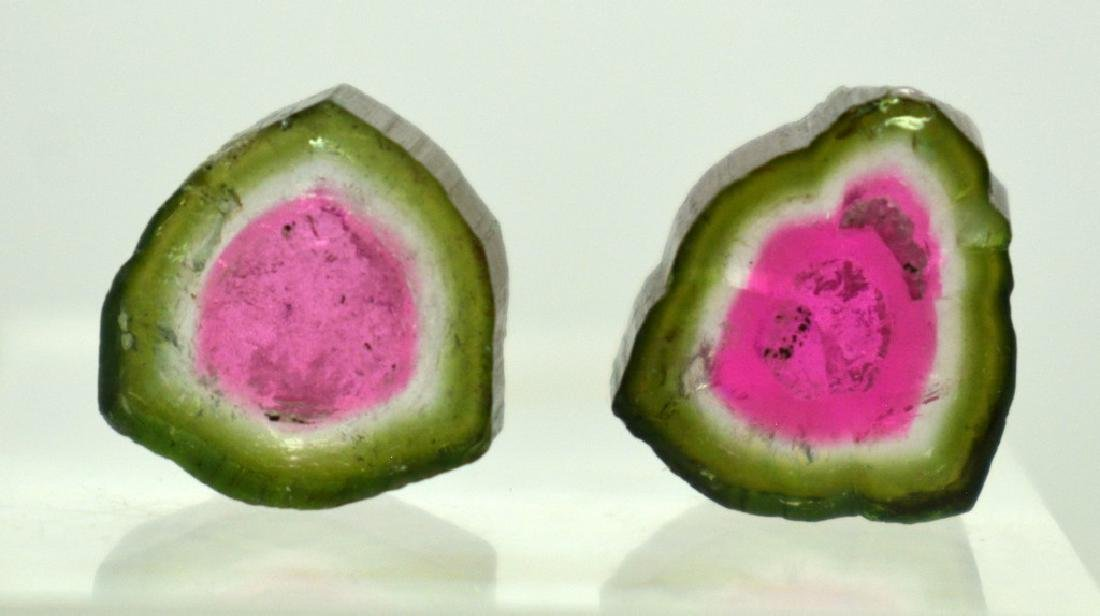 2 PCS Beautifull Watermelon Tourmaline Slices