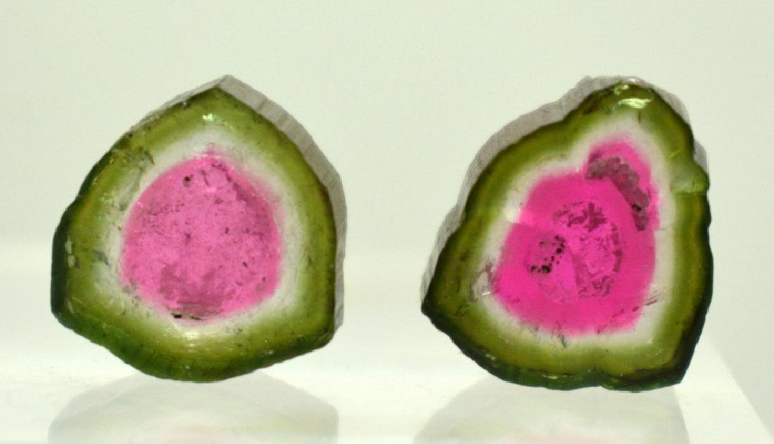 2 PCS Beautifull Watermelon Tourmaline Slices - 2