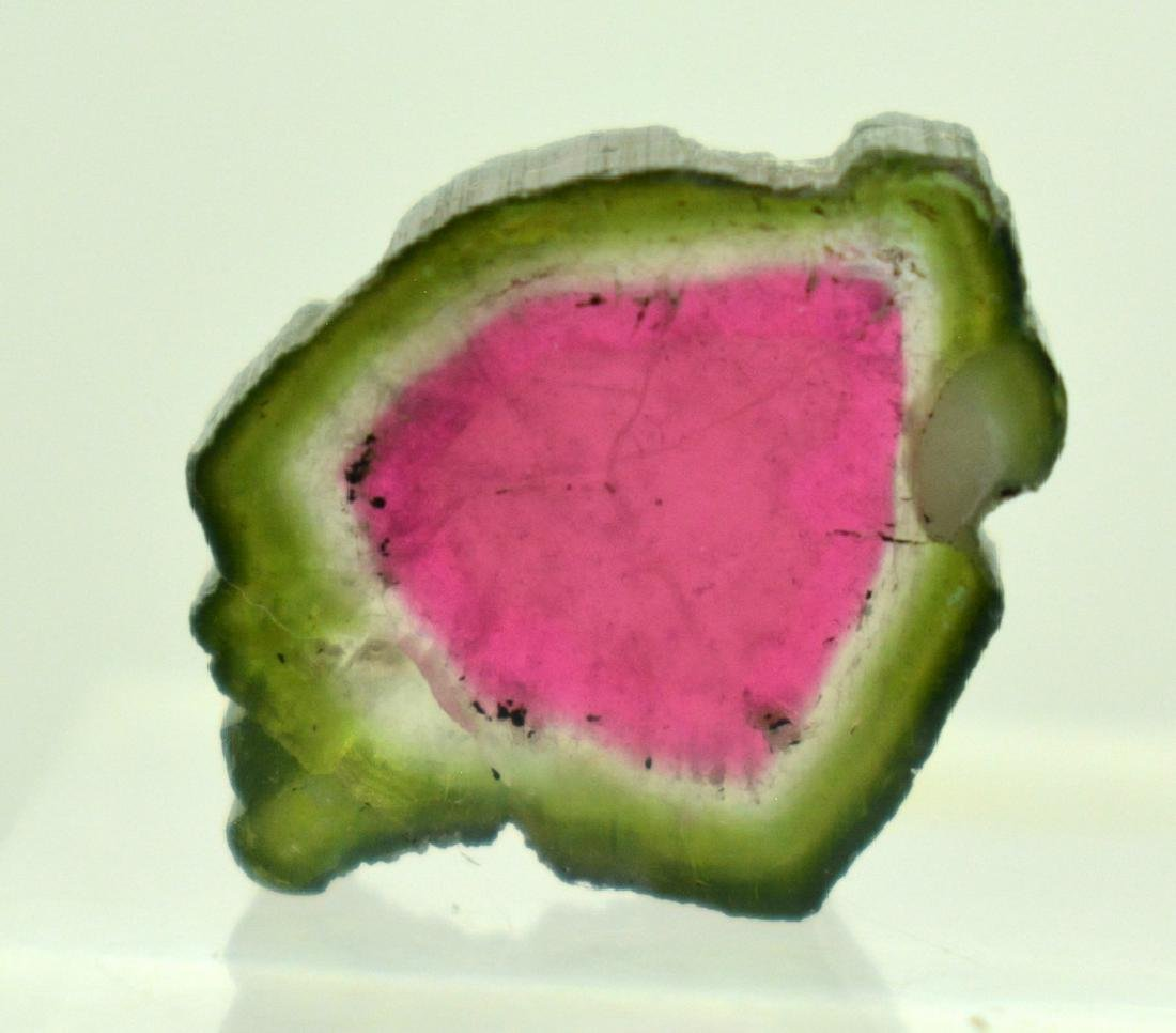 Beautifull Watermelon Tourmaline Slice - 6