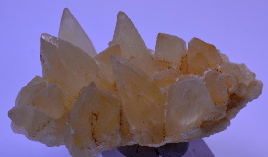 Natural Calcite dog Tooth Specimen