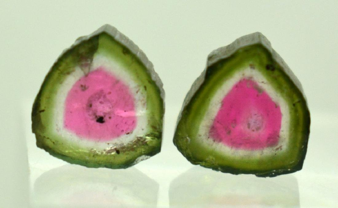 Beautiful Watermelon Tourmaline Slice Lot