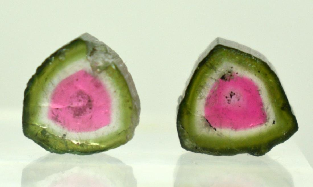 Beautiful Watermelon Tourmaline Slice Lot - 3