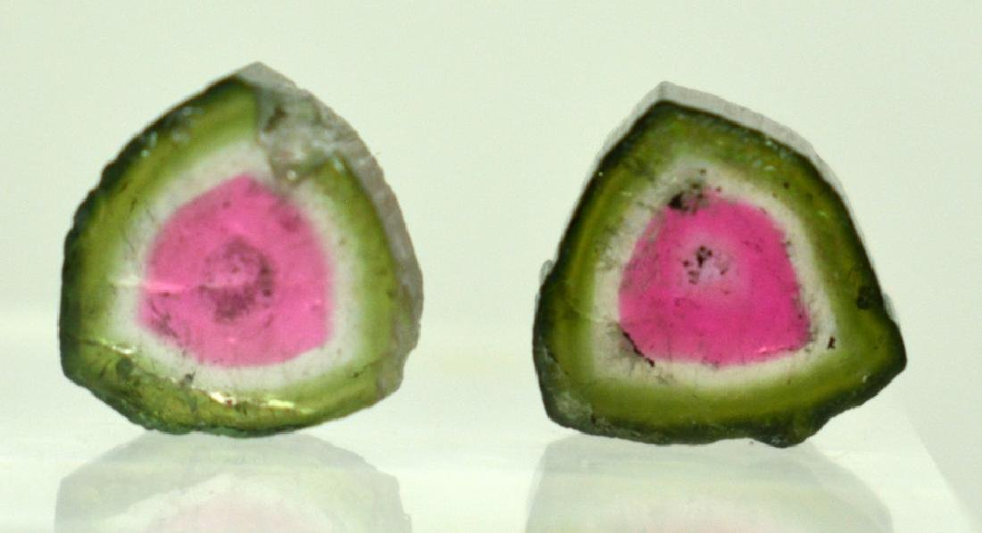 Beautiful Watermelon Tourmaline Slice Lot - 4