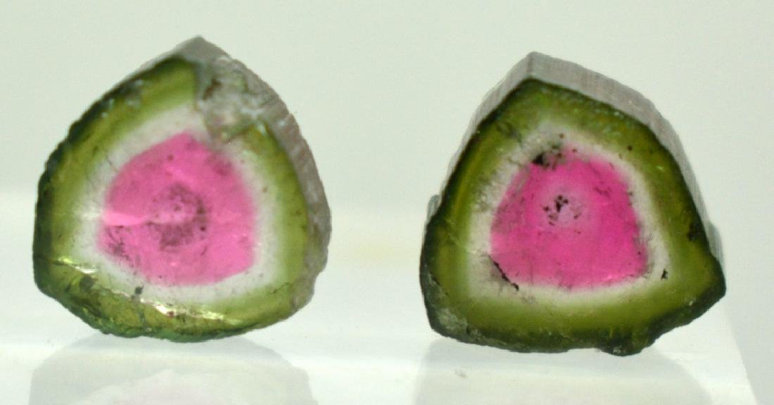 Beautiful Watermelon Tourmaline Slice Lot - 5