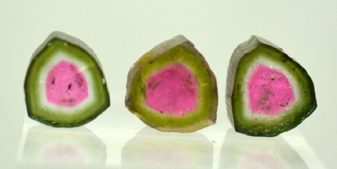 Beautiful Watermelon Tourmaline Slice Lot
