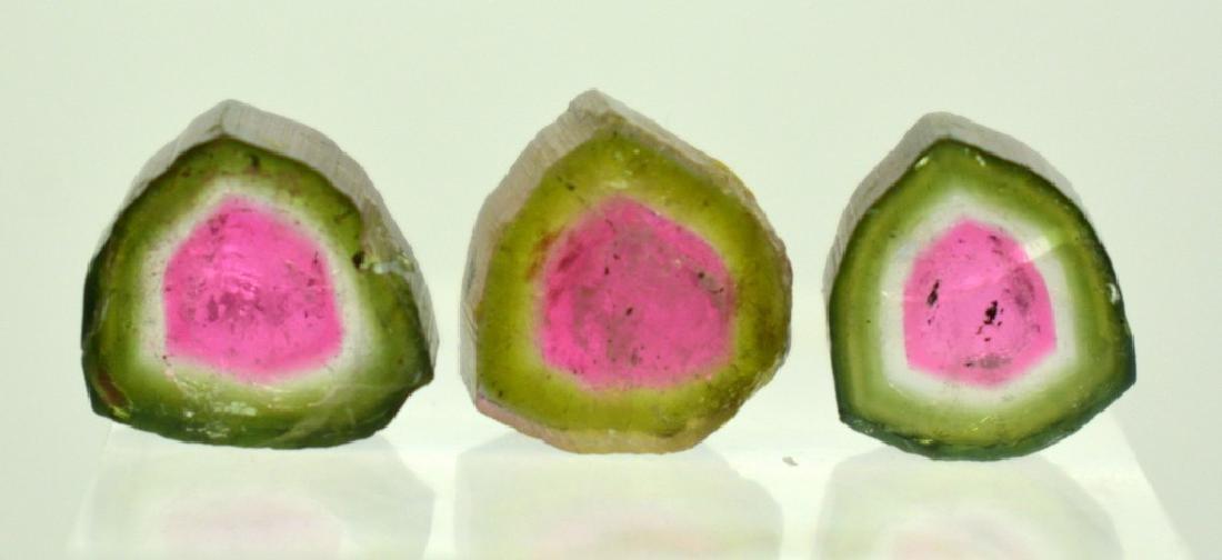 Beautiful Watermelon Tourmaline Slice Lot - 2