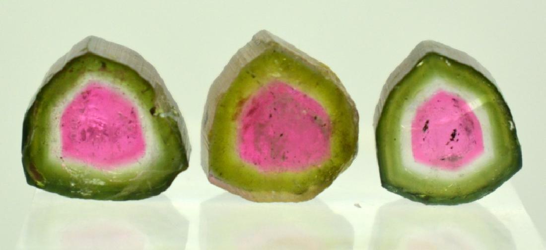 Beautiful Watermelon Tourmaline Slice Lot - 3
