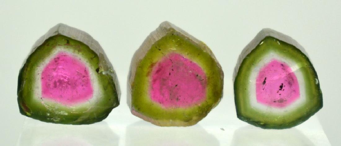 Beautiful Watermelon Tourmaline Slice Lot - 4