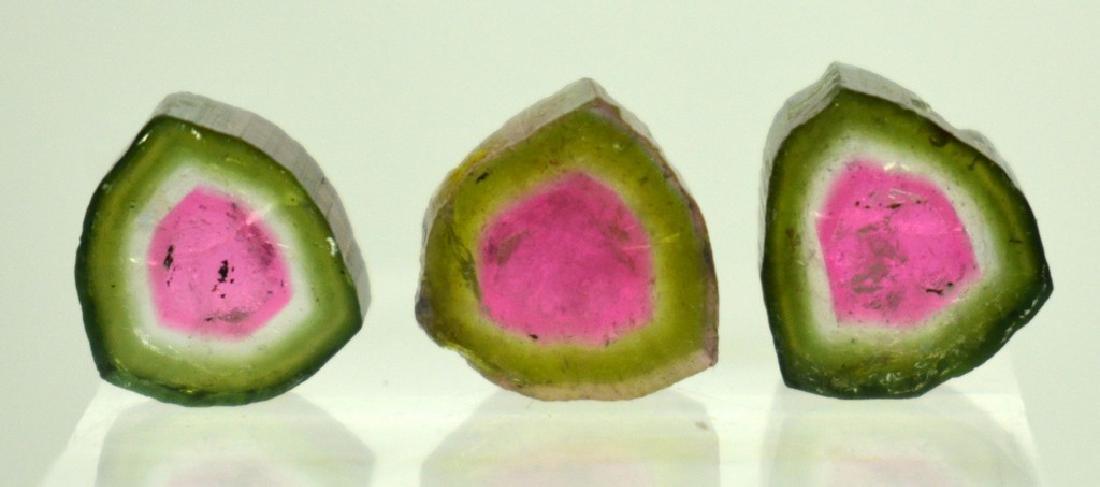 Beautiful Watermelon Tourmaline Slice Lot - 5