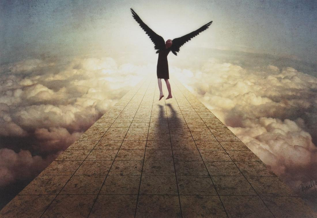 Ben Goossens Print Learning to fly