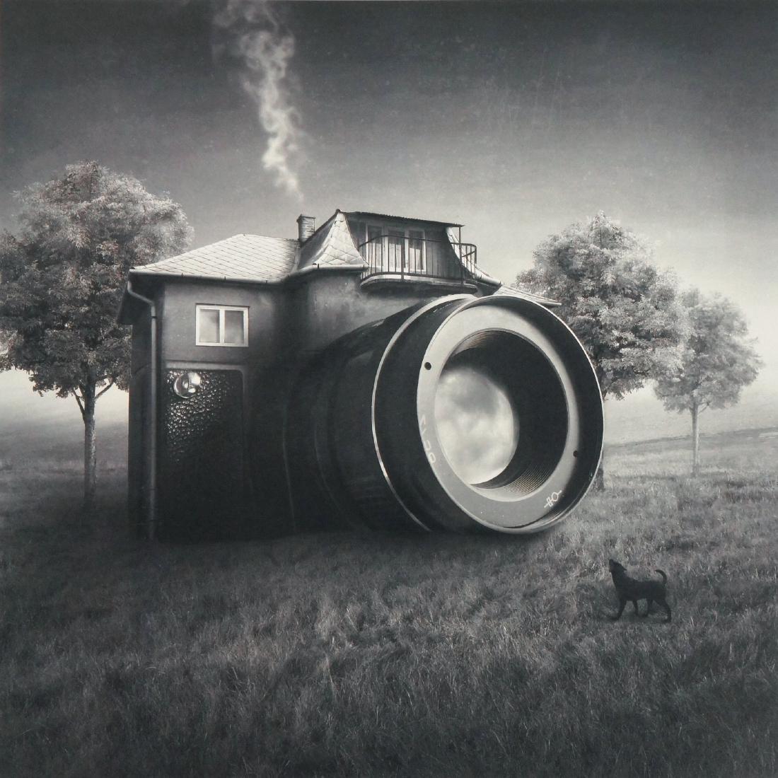 Sarolta Ban Print Camera Domestica