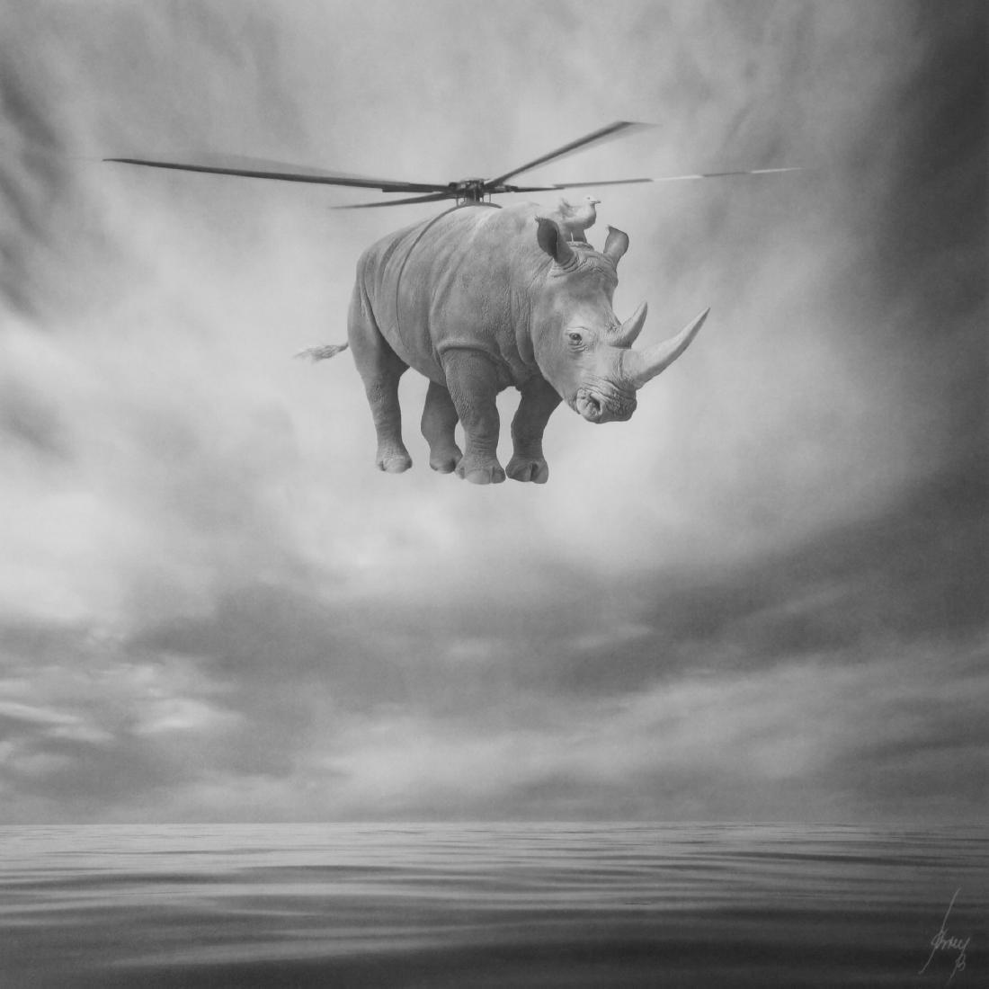 Beata Bieniak Print Rhinocopter