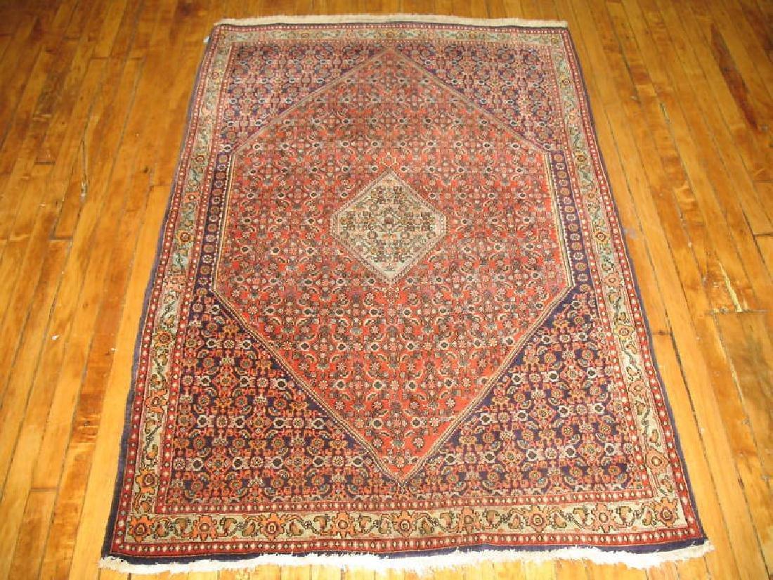Vintage Lovely Persian Bidjar Rug 3.9x5.7