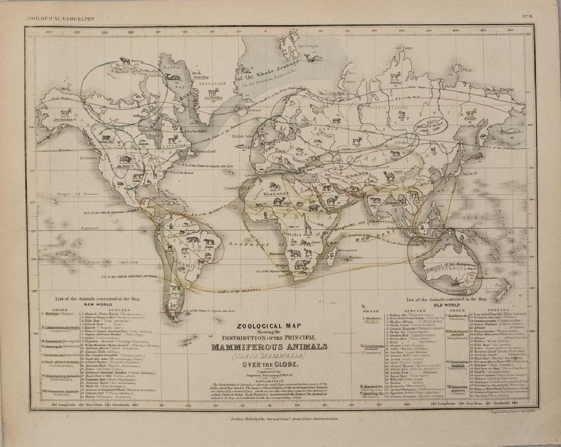 1850 Petermann Map of Distribution of Mammals Globally