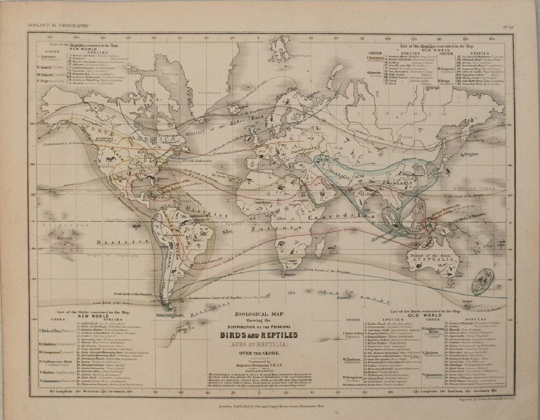 1850 Petermann Map of Distribution of Birds & Reptiles