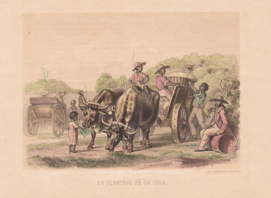 Lundquist: Plantation Scene in Colonial Cuba
