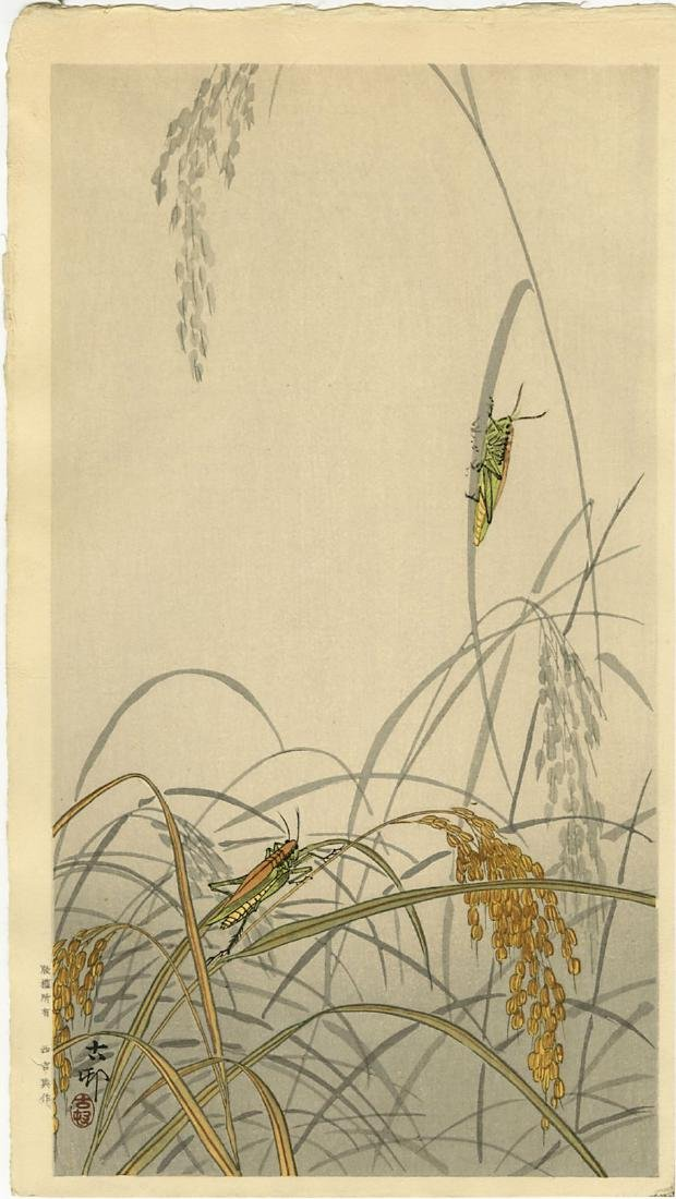 Koson Ohara Woodblock Grasshoppers on Rice