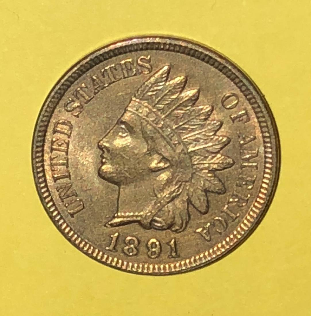 1891 Indian Head - MS67 RD Very Very Rare