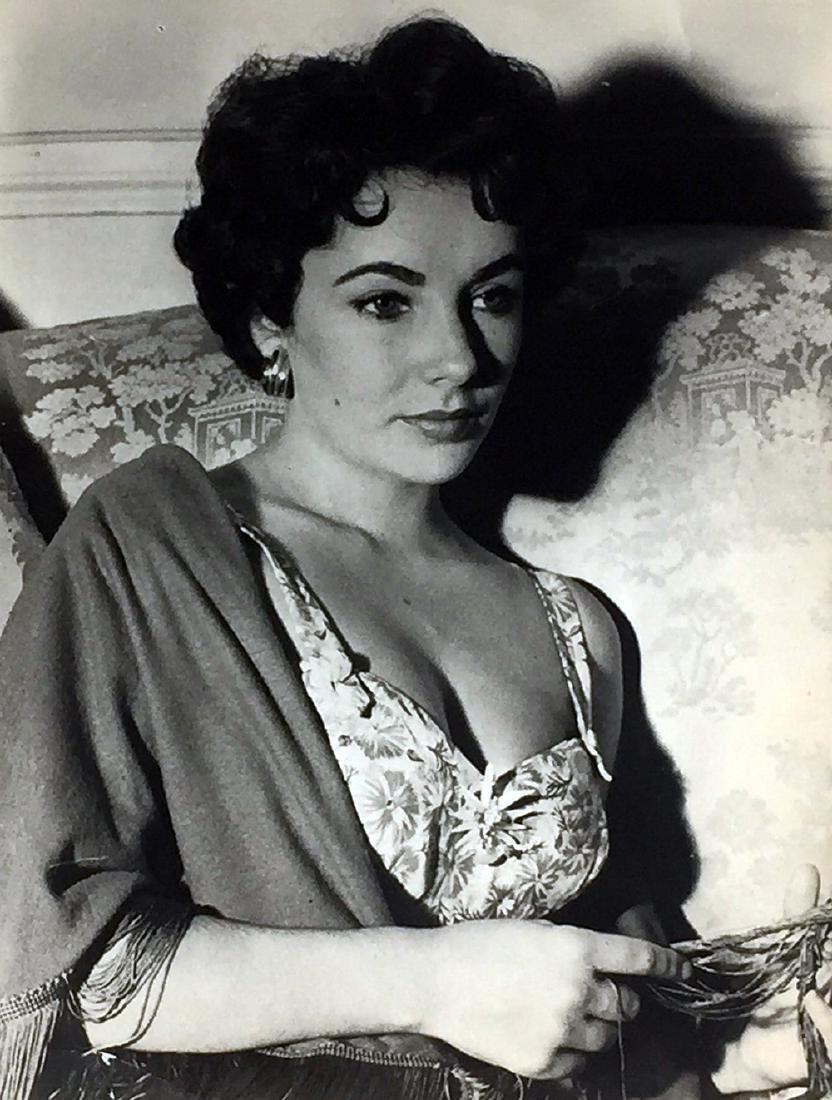 Elizabeth Taylor, 1953 Farabola Archivio Farabola