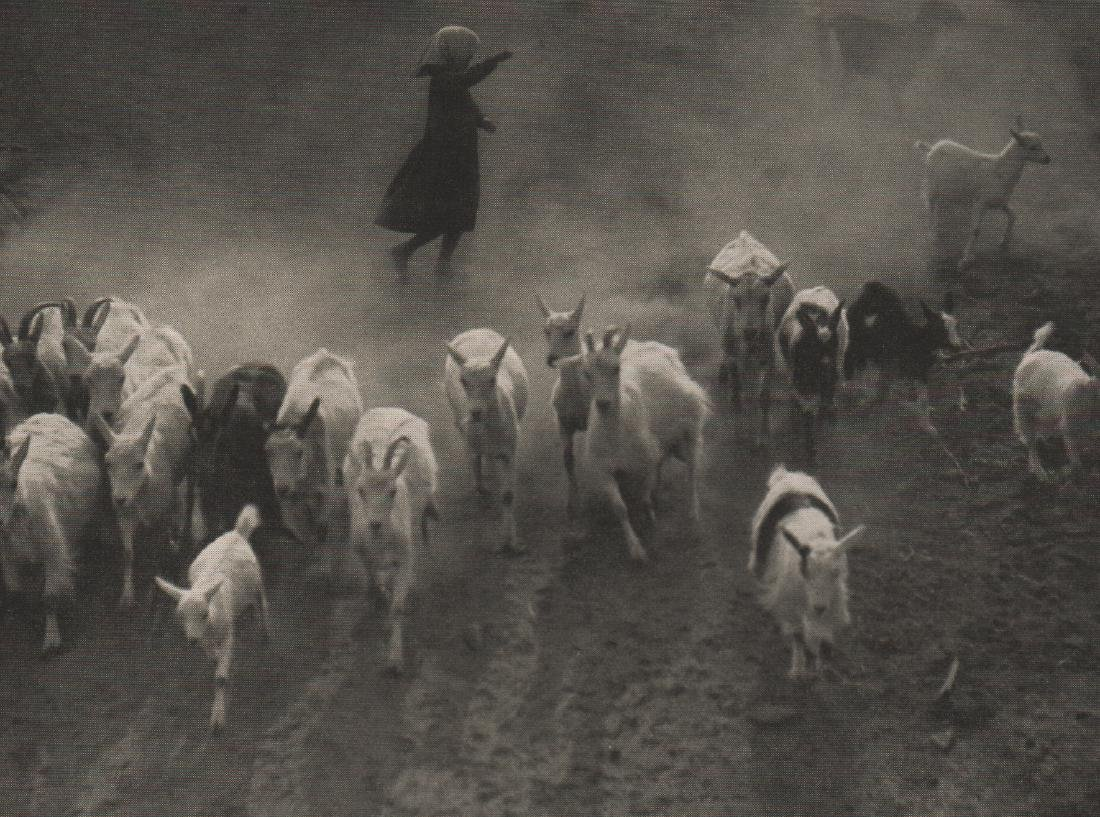 ERNO VADAS - Goat herd