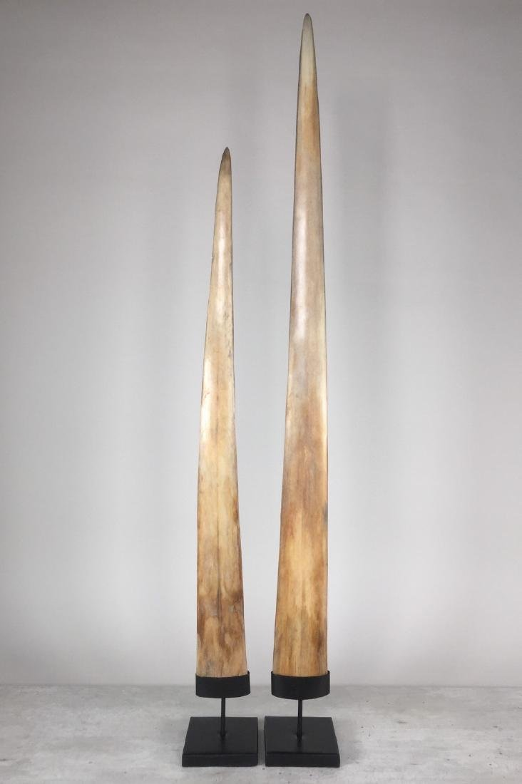 Fine Pair of Swordfish Tusks (Xiphias Gladius)