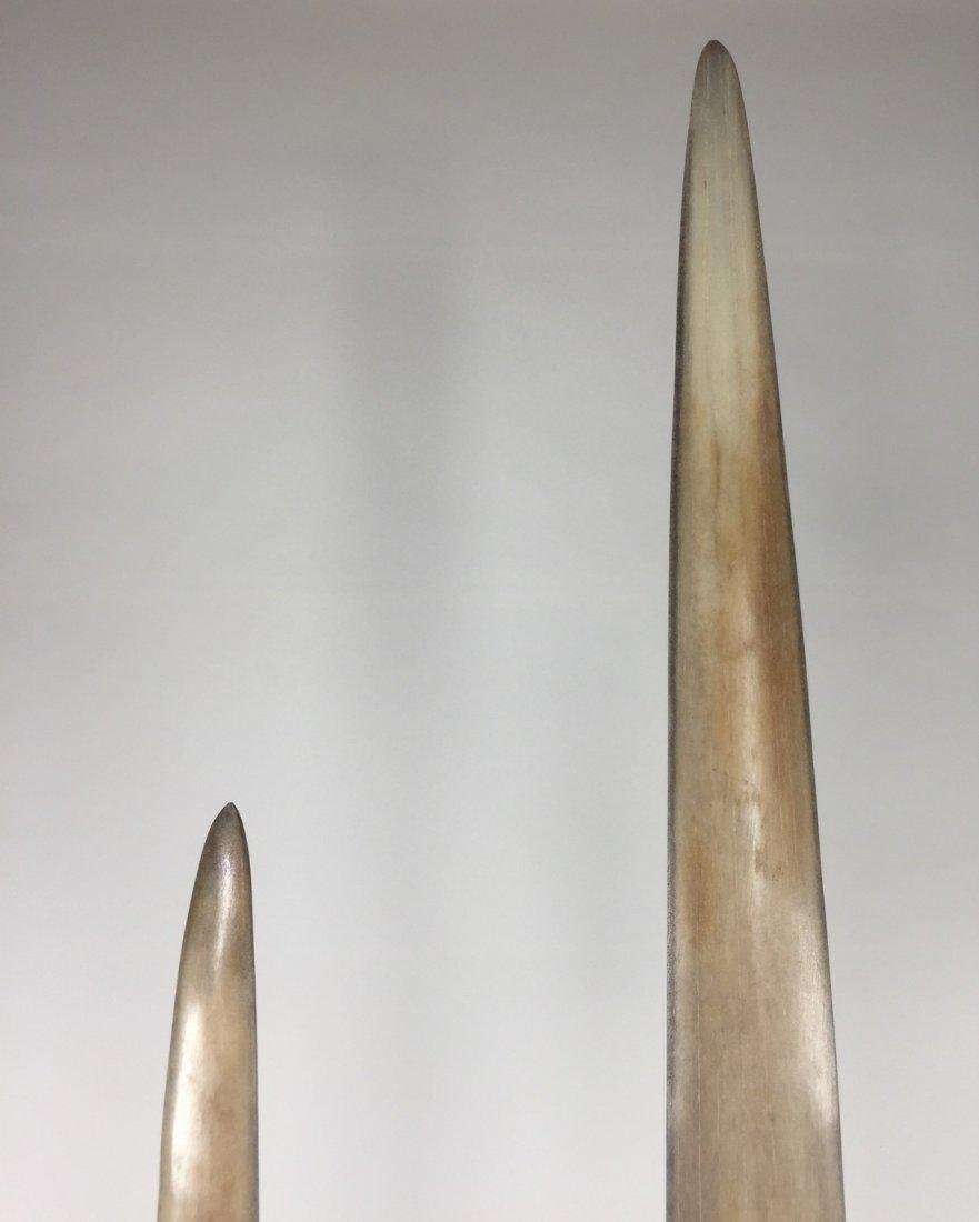 Fine Pair of Swordfish Tusks (Xiphias Gladius) - 6