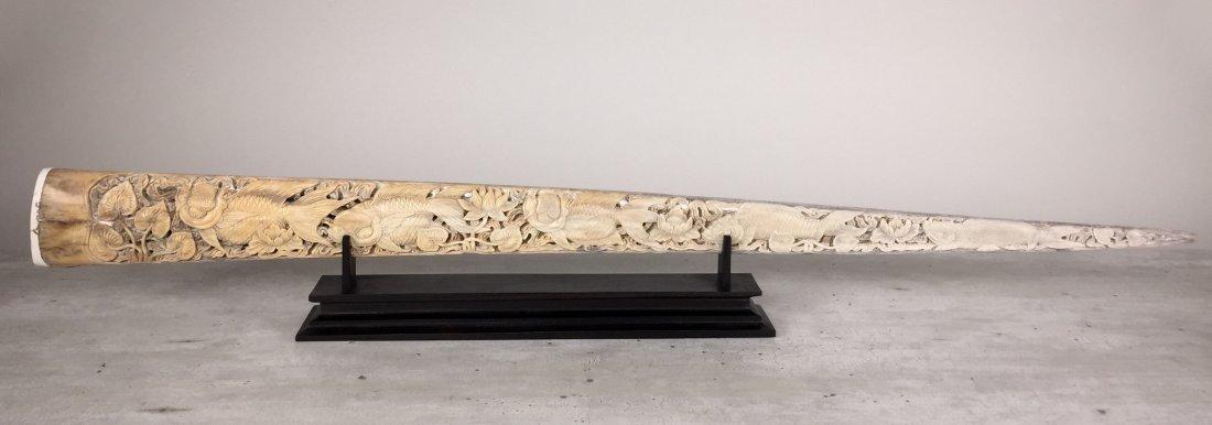 Stunning swordfish tusk with hand engraved Japanese koi - 3