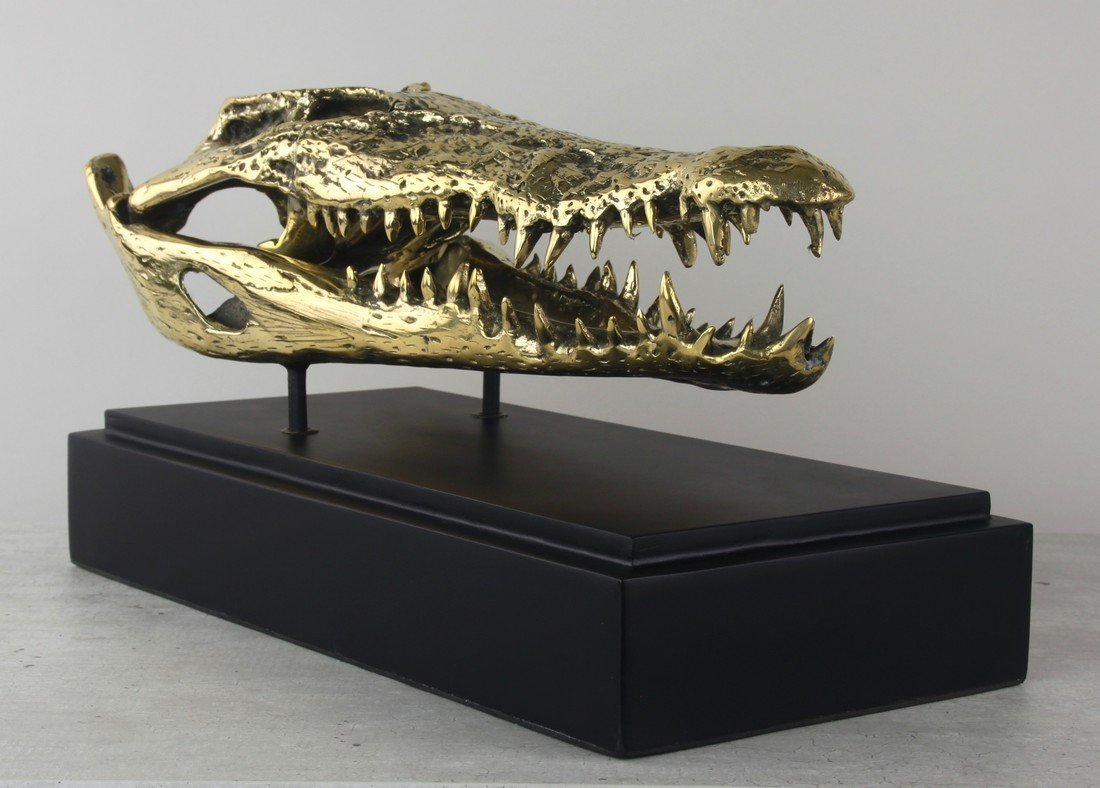 Fine brass statue of a crocodile skull - 3
