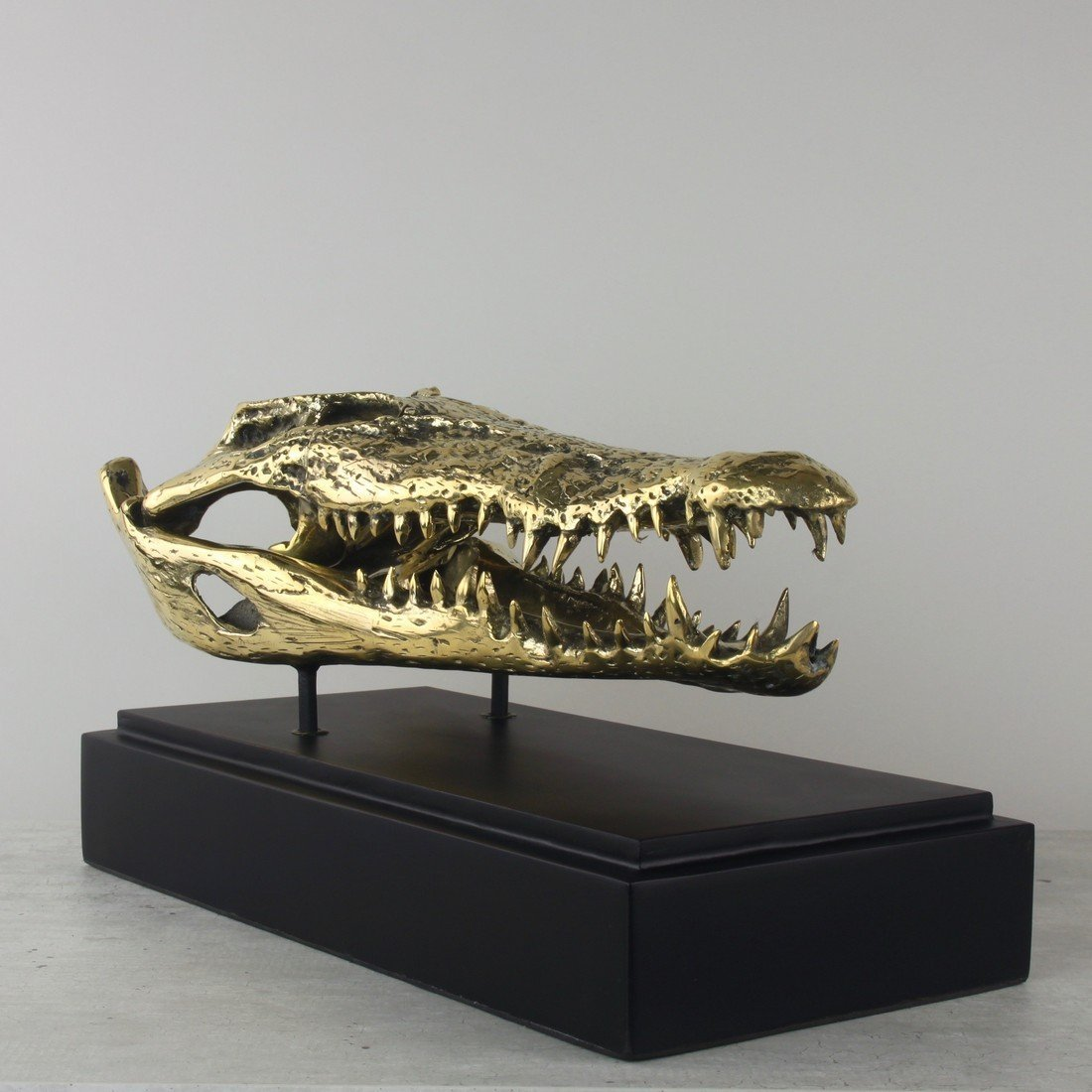 Fine brass statue of a crocodile skull - 4