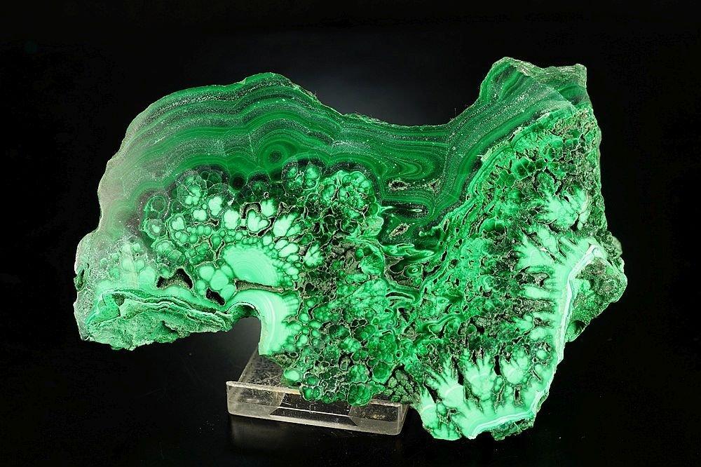Malachite - one side polished specimen - fantastic form