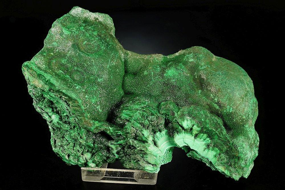 Malachite - one side polished specimen - fantastic form - 2