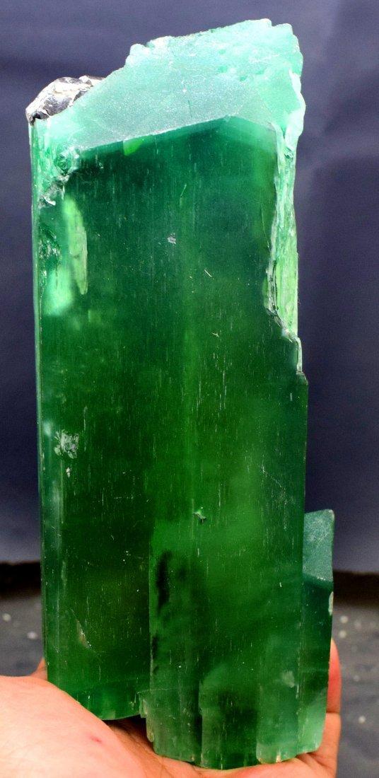 1019 Gram v-shape terminated and undamaged lush green