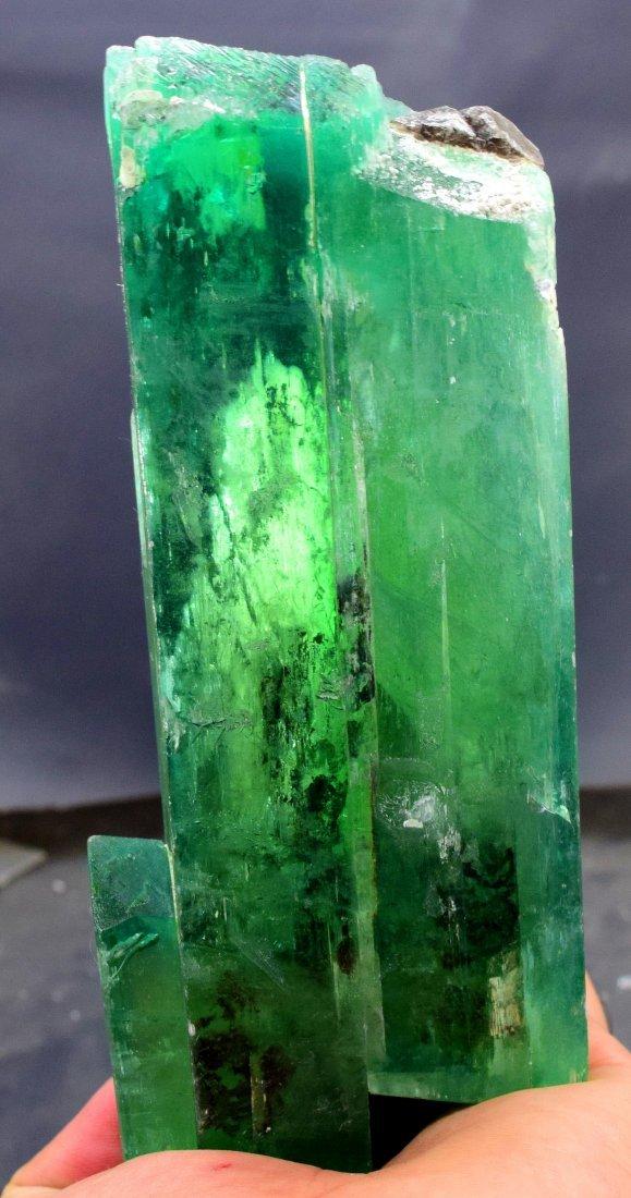 1019 Gram v-shape terminated and undamaged lush green - 3