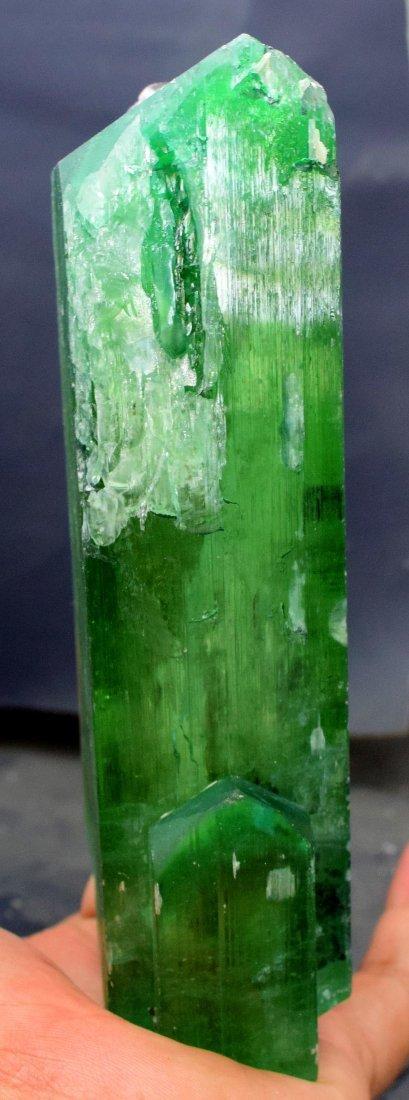1019 Gram v-shape terminated and undamaged lush green - 6