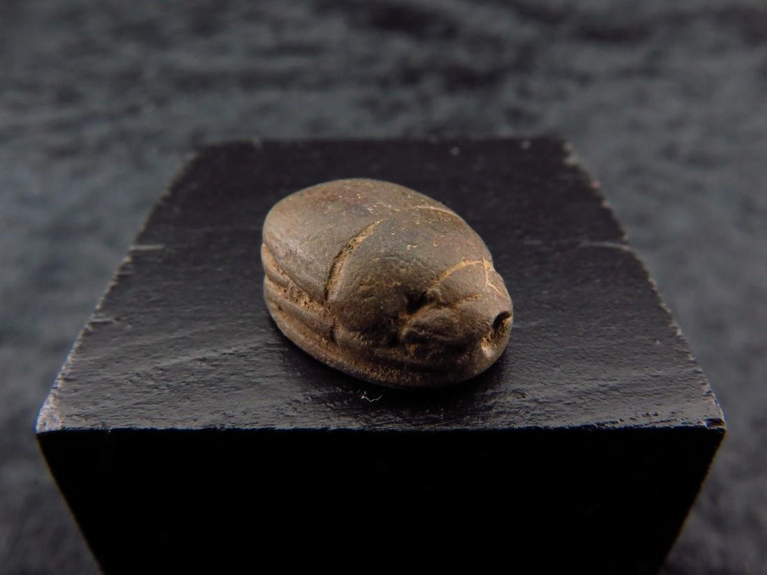Egyptian Steatite Scarab - 2