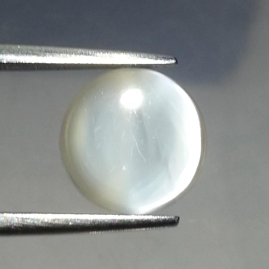 Moonstone Cat's Eye - 8.66 ct - 4