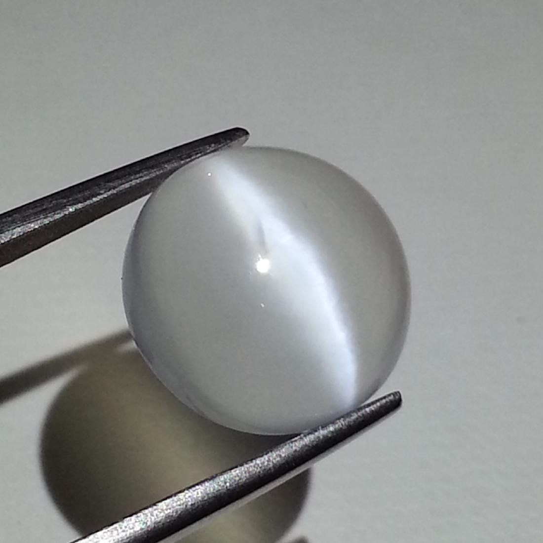 Moonstone Cat's Eye - 8.22 ct - 2