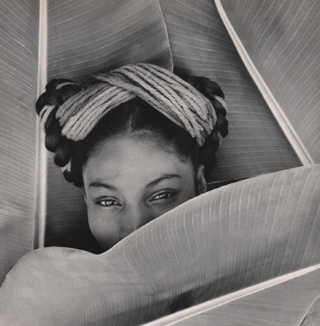 FRITZ HENLE - Nievis, 1943