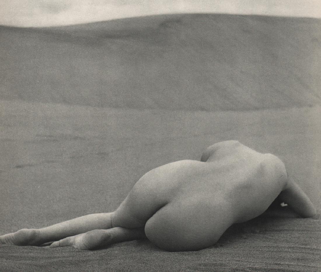 SHOJI OTAKE -  Nude